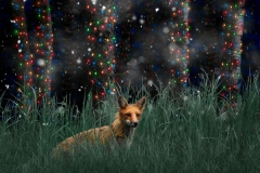 Fox Holiday Card
