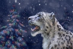 Snow Leopard Holiday Card